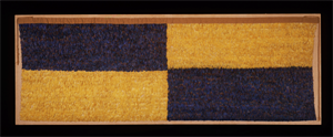 Image of Blue And Yellow Panel